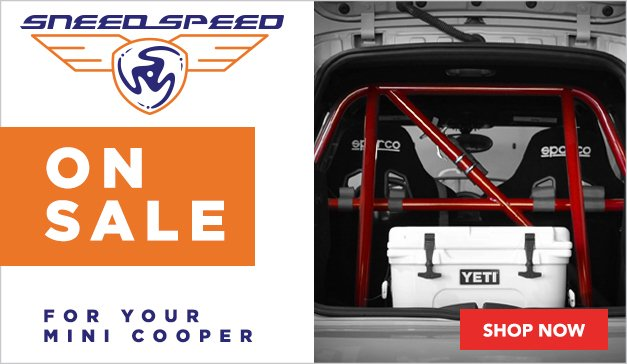 MINI - Sneed4Speed Products - New Painted Roll Cages
