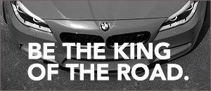 BMW F30 320i/xDrive Turner Performance Tuning Module