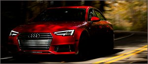 Audi B9 A4 Neuspeed Power Module