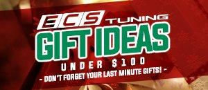 ECS Gift Ideas $50 - $100