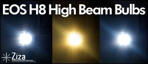 EOS H8 Bulbs